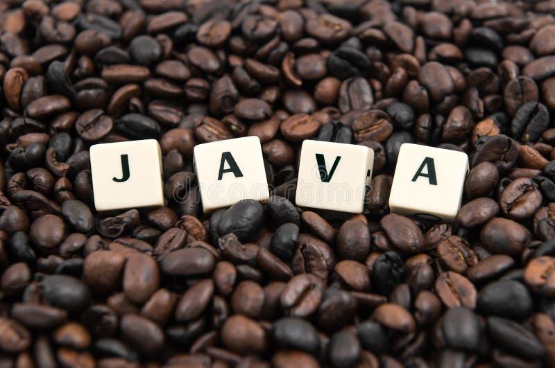 在咖啡豆的JAVA白色立方体文本 免版税库存照片