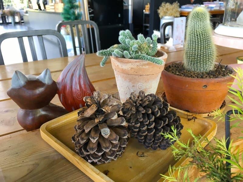 在咖啡馆里面的仙人掌罐 图库摄影
