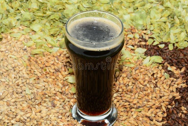 在品尝师玻璃的烈性黑啤酒 免版税图库摄影