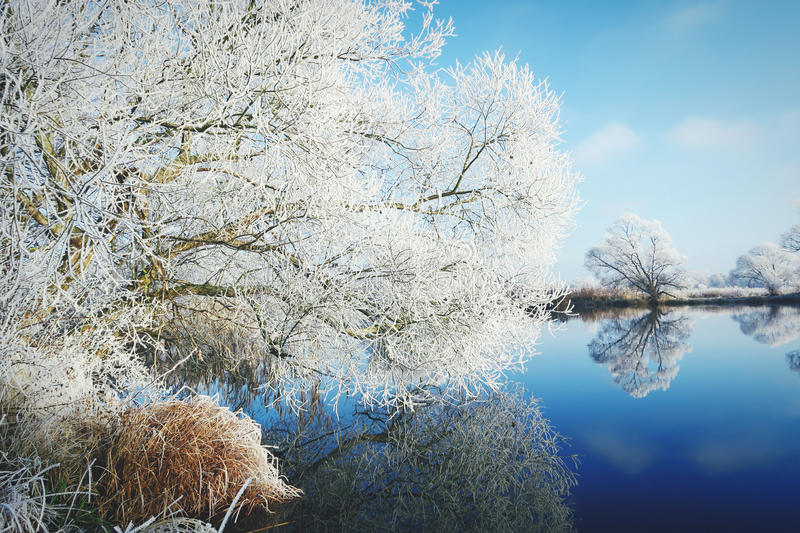 在哈弗尔河哈维尔兰县,德国的树冰风景 库存图片