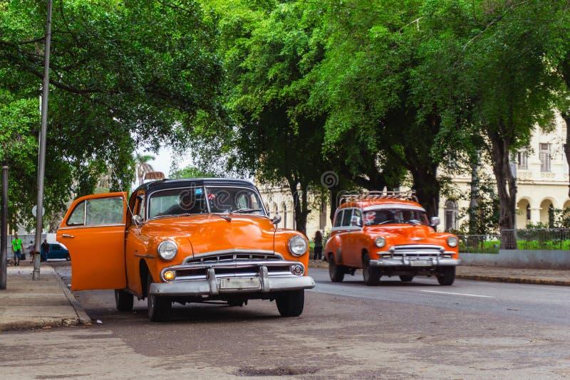 在哈瓦那街道,古巴上的老美国出租汽车汽车 库存照片