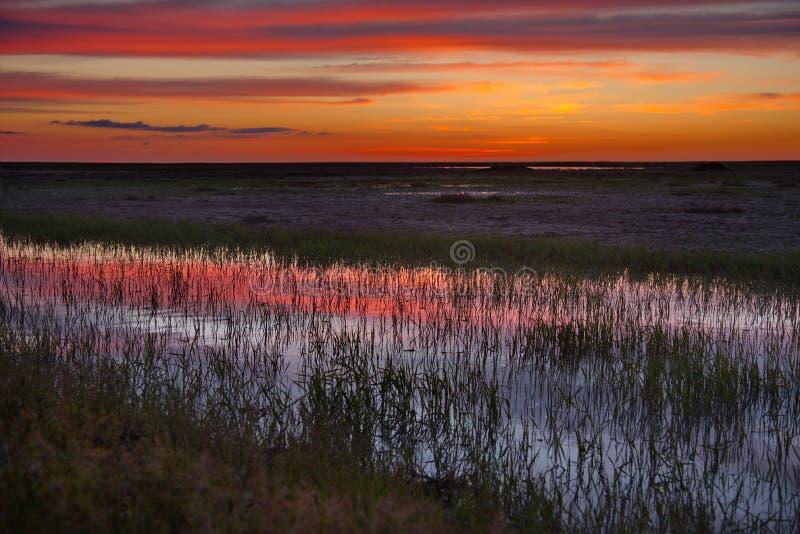 在哈萨克斯坦干草原的惊人的日落  库存照片