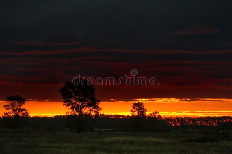 在哈萨克斯坦干草原的惊人的日落  库存图片