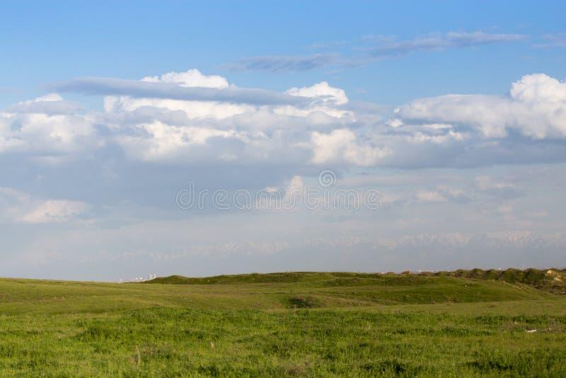 在哈萨克斯坦干草原的春天  免版税图库摄影