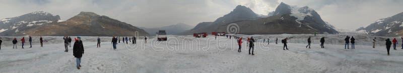 在哥伦比亚Icefield的阿萨巴斯卡冰川 库存照片