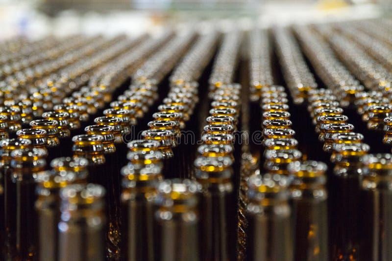 在啤酒厂倒空在装瓶专线的棕色啤酒瓶 免版税库存照片