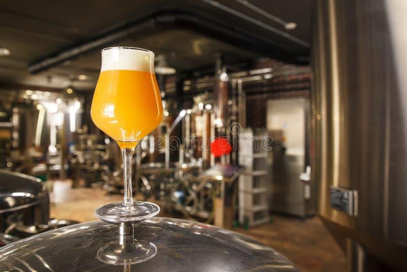 在啤酒厂的朦胧的IPA啤酒 免版税库存照片