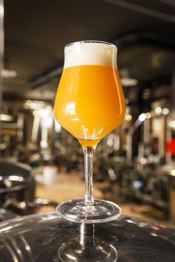 在啤酒厂的朦胧的IPA啤酒 库存照片