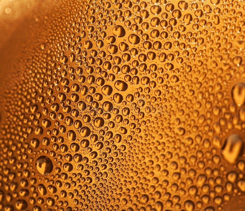 在啤酒背景的水下落 免版税库存照片