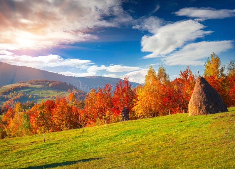 在喀尔巴阡山脉的五颜六色的秋天风景 免版税库存图片