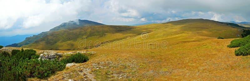 在喀尔巴阡山脉的夏天风景 免版税图库摄影