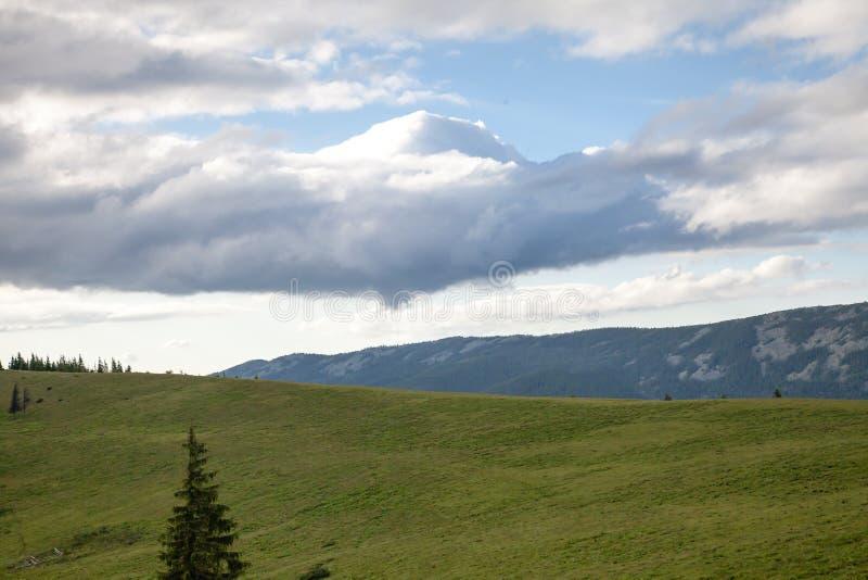 在喀尔巴阡山脉的夏日 库存照片