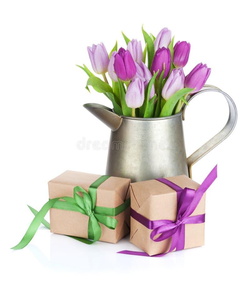 在喷壶和礼物的紫色郁金香花束 库存照片