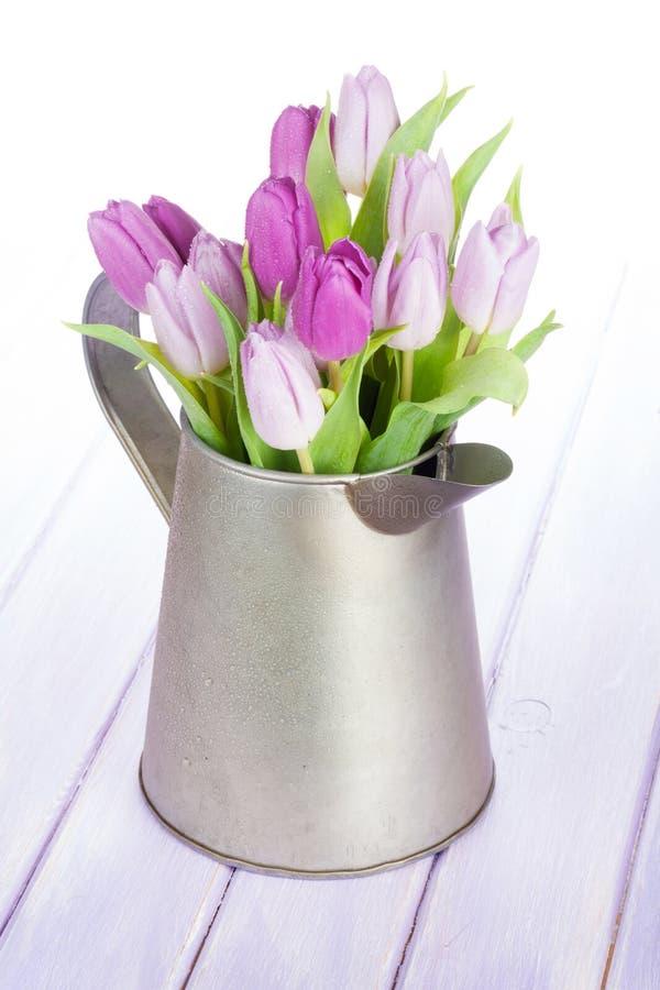 在喷壶的紫色郁金香花束 免版税图库摄影