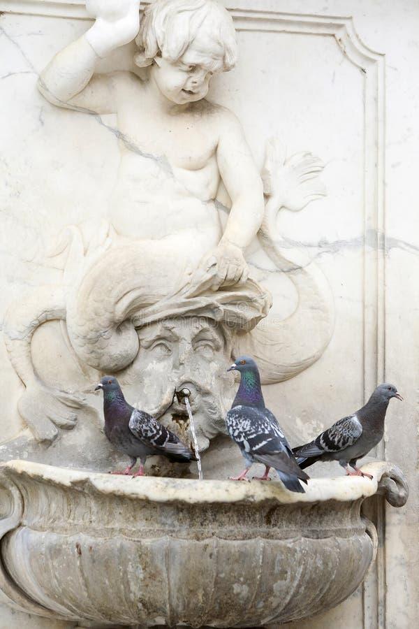 在喷泉的三只鸽子 免版税库存照片