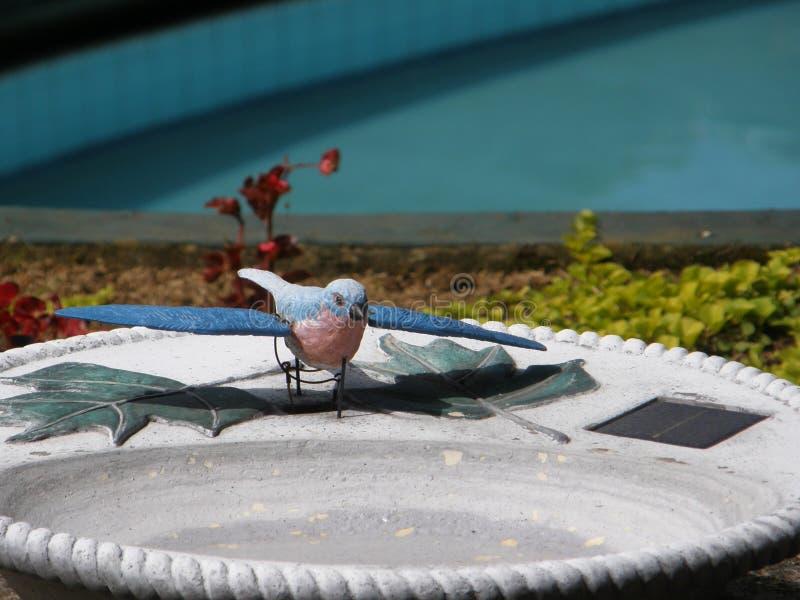 在喷泉的人为蓝色鸟 库存照片