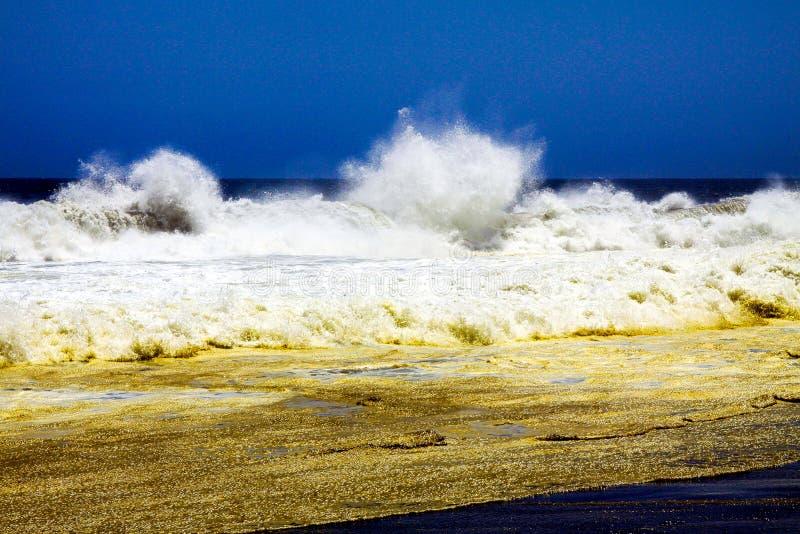 在喷洒的起泡沫的白色波浪的看法与金棕色海浪和黑熔岩沙滩 免版税库存图片