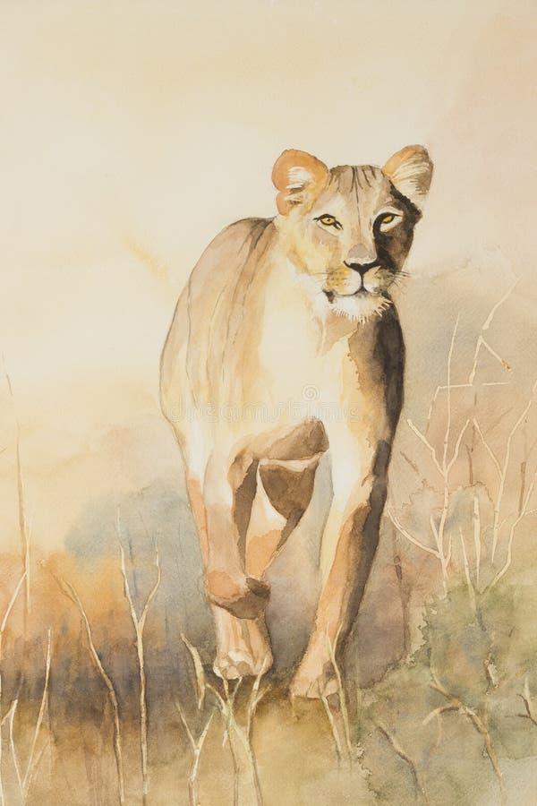 在四处寻觅的雌狮 库存例证