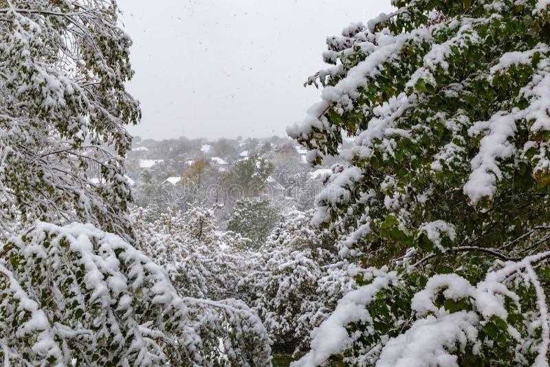 在围困下的邻里:2018个冬天季节第一雪在奥马哈内布拉斯加美国 免版税库存图片