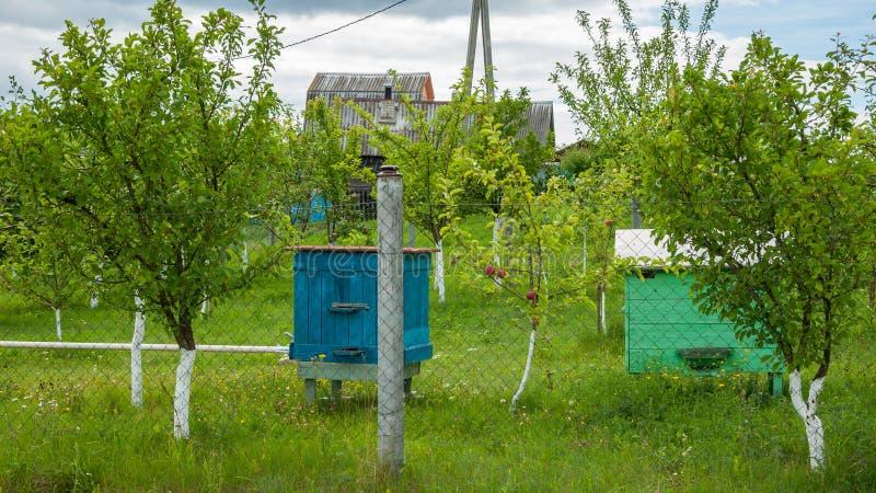 在国家农庄的蜂箱蜂房 免版税库存照片