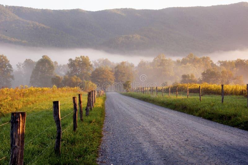 在国家(地区)运输路线的雾和星期日上升。 免版税库存图片