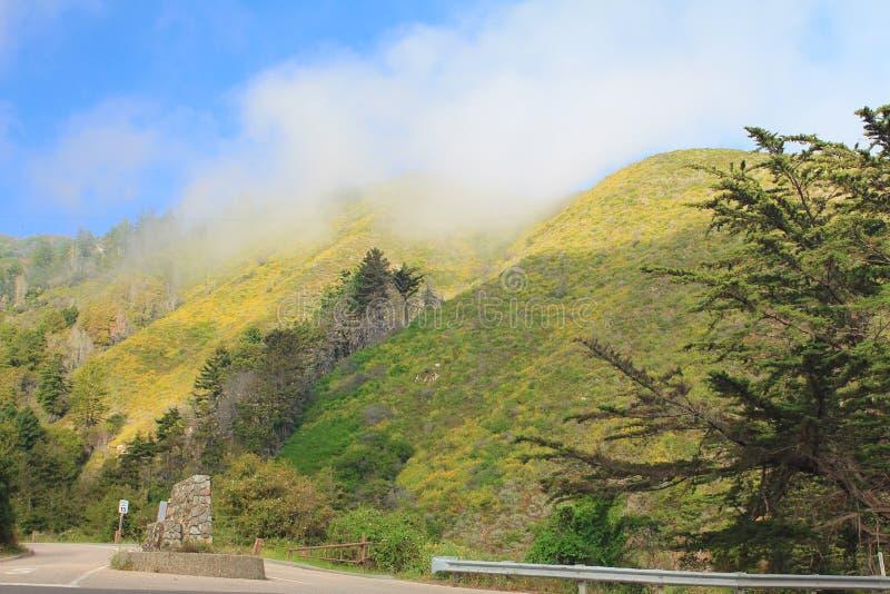 在国立公园的美好的自然山风景在美国 库存照片