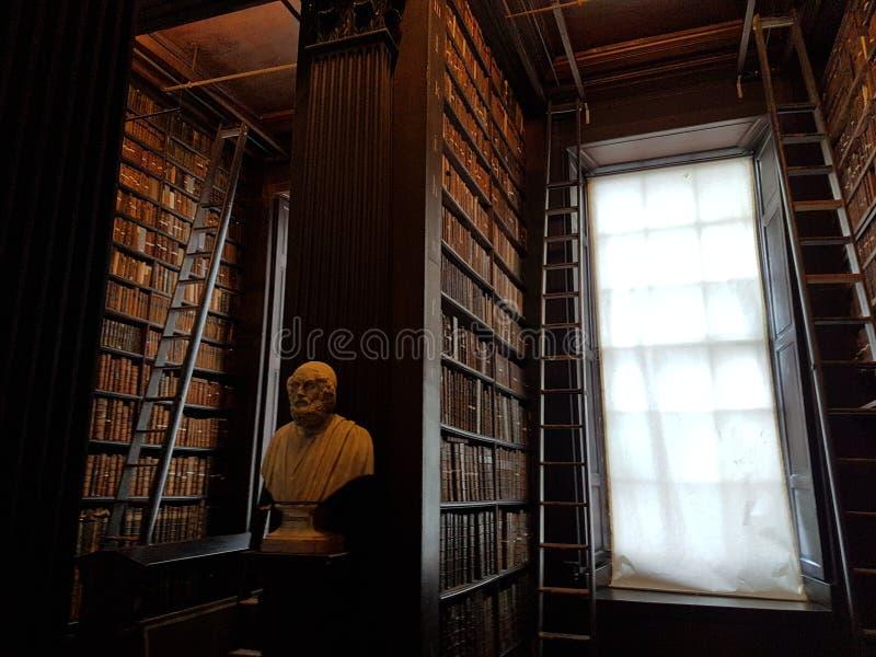 在图书馆书人biblioteca Dublino都伯林里面的三位一体学院 免版税库存图片