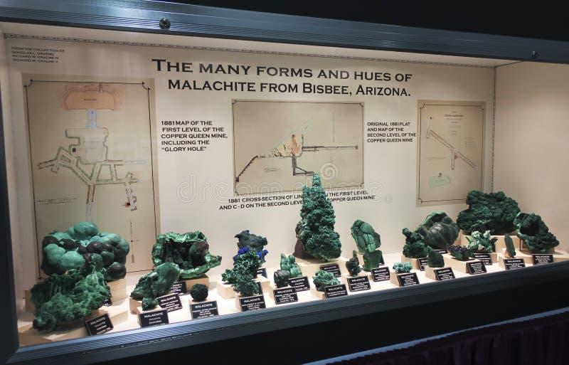 在图森宝石和矿物展示的绿沸铜汇集 免版税图库摄影
