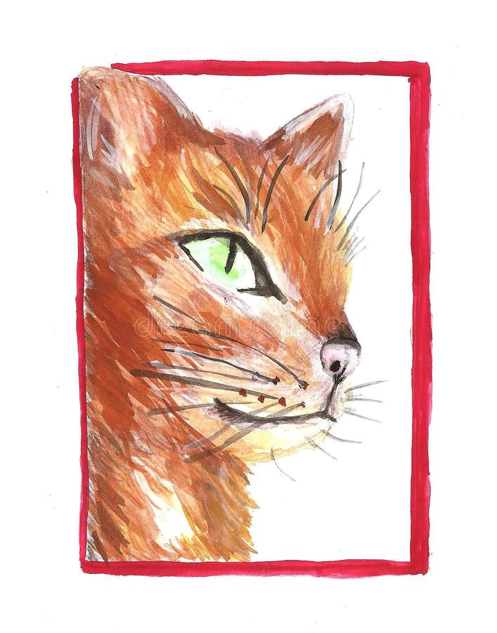 在图片红色框架的猫 免版税库存照片