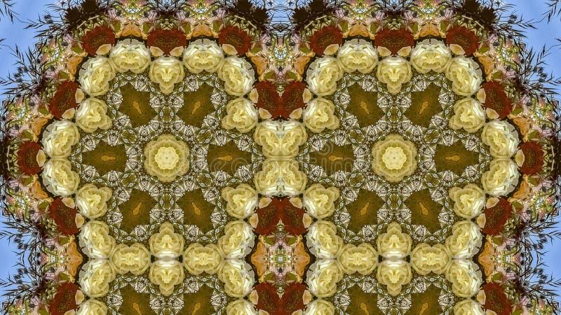 在圆安排的全景框架四倍六角花在婚礼在蓝色背景的加利福尼亚 免版税库存图片