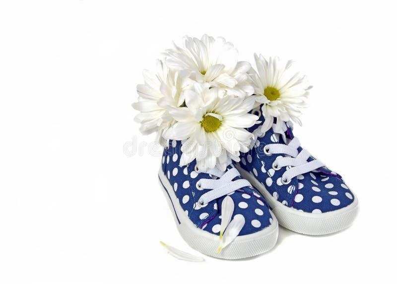 在圆点运动鞋的雏菊 库存图片