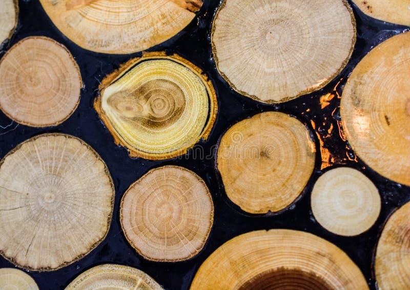 在圆的稀薄的片断切开的木日志 库存照片