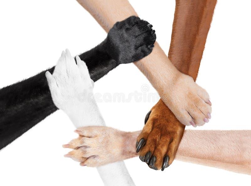在圈子的被加入的爪子手以一团队 免版税库存图片