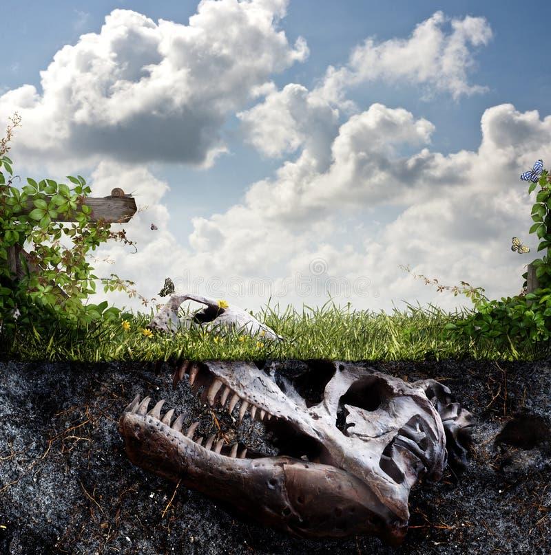 在土埋没的恐龙化石 免版税图库摄影