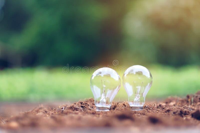 在土壤的电灯泡有绿色背景 生态和挽救能量概念 免版税库存图片