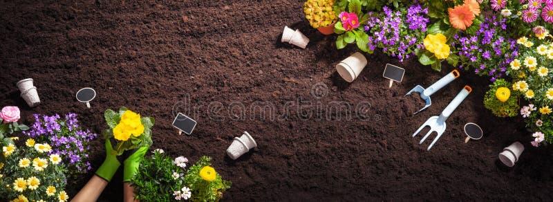 在土壤背景的园艺工具 库存照片