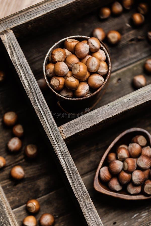 在土气木背景的榛子 背景许多饺子的食物非常肉 厨房的印刷品 免版税库存照片