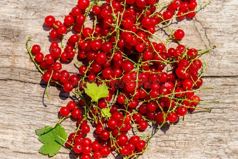 在土气木背景的红浆果莓果 r 免版税图库摄影