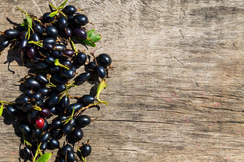 在土气木背景的黑醋栗莓果 免版税库存图片