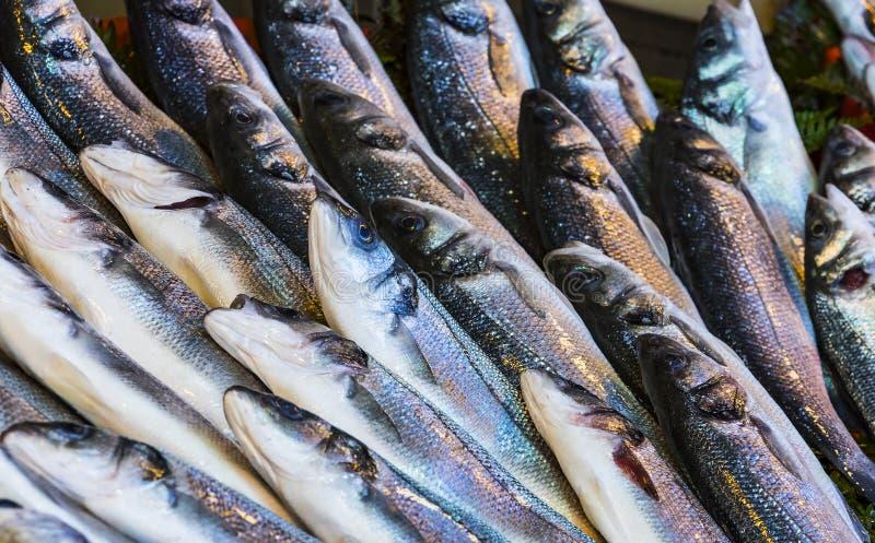 在土耳其语的新海鱼背景 免版税库存图片
