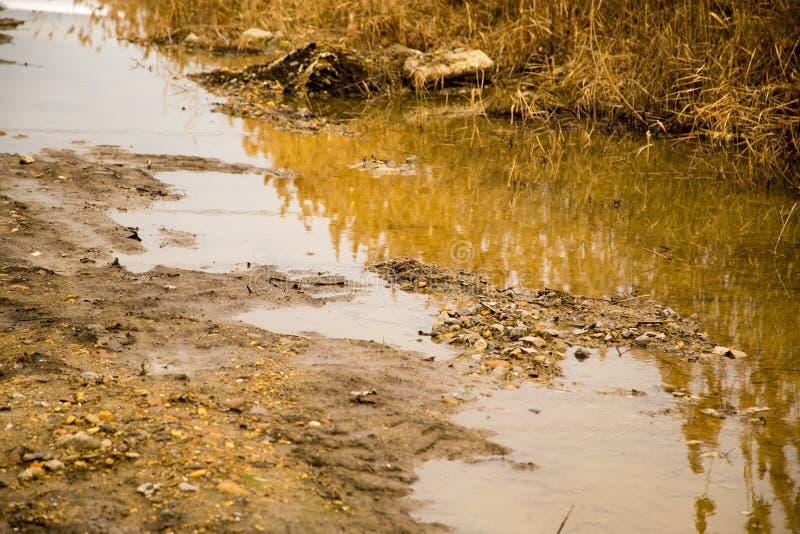 在土路的一个大肮脏的水坑 图库摄影
