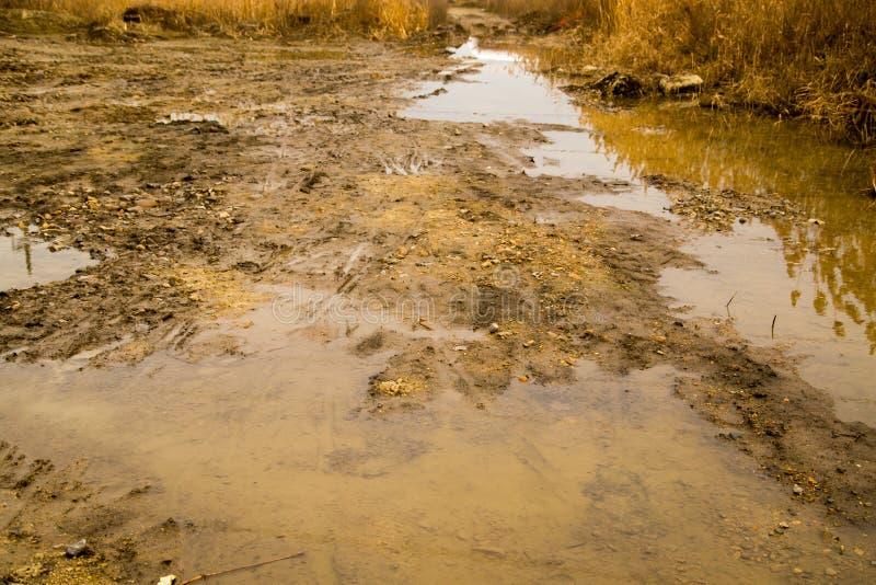 在土路的一个大肮脏的水坑 免版税库存图片