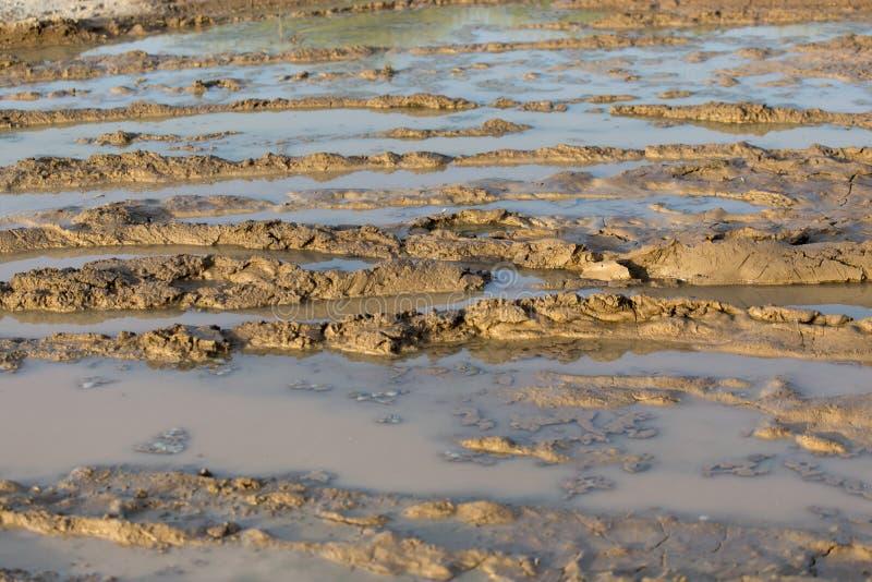 在土路的泥浆坑 免版税库存图片