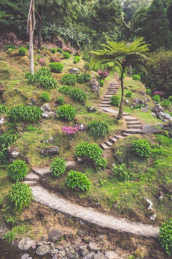 在圣地米格尔海岛,亚速尔群岛上的庭院 它位于中间 免版税库存照片