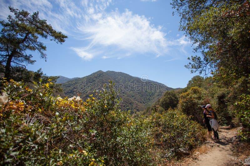 在圣塔阿尼塔峡谷,安赫莱斯国家森林,圣加百利在洛杉矶附近的山脉的美丽的狭窄的远足道路 库存照片