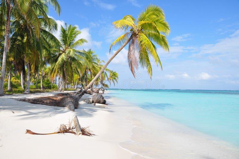 在圣布拉斯海岛,巴拿马的最美丽的偏僻的加勒比海滩。中美洲 图库摄影