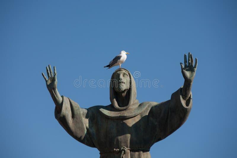 在圣弗朗西斯雕象的海鸥在广场圣乔瓦尼,罗马,意大利 库存照片