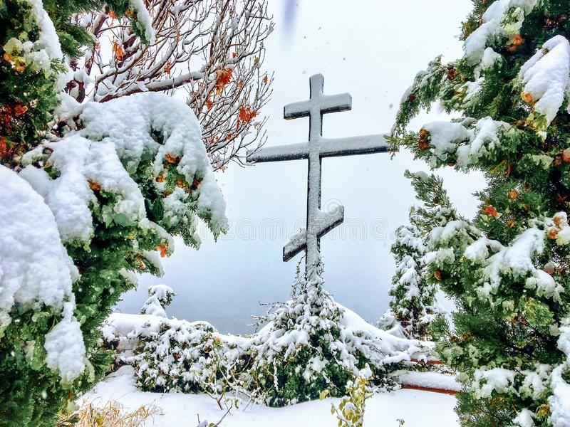 在圣洁圣山,雪的一种异常现象下跌并且包括绿色树 免版税图库摄影