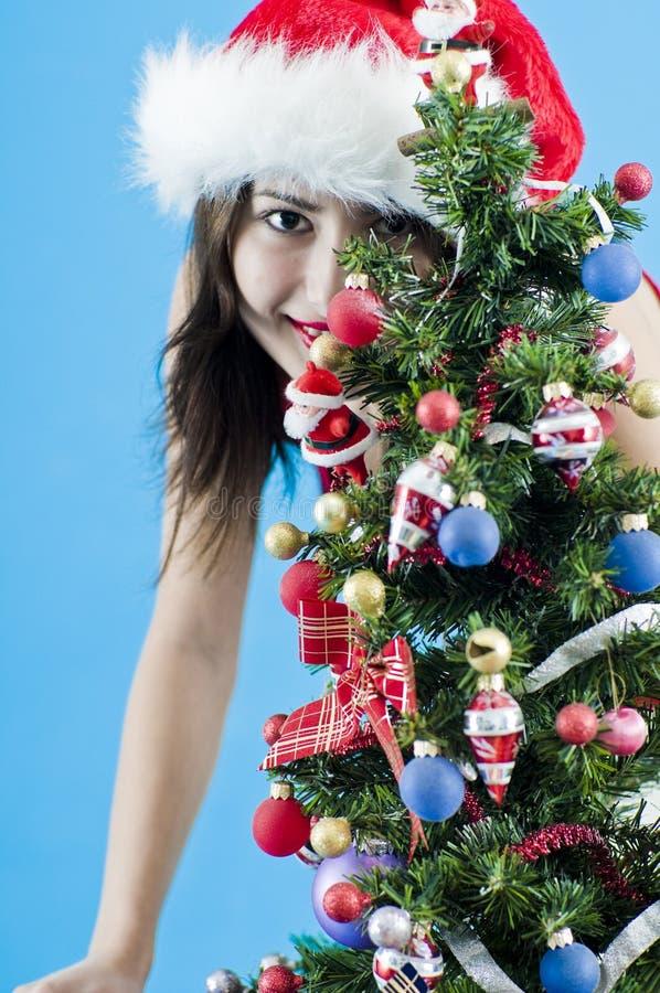 在圣诞树之后 库存照片