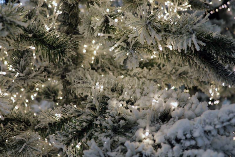 在圣诞树的圣诞节玩具在除夕 新年和Christmass绿色装饰光,照明 诗歌选 库存图片